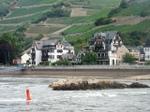 Rhine2_1